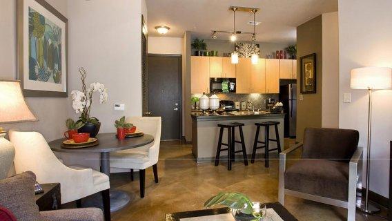 Luxury Apartment Rentals   The