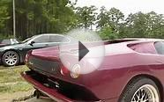 Lamborghini Diablo Charleston Car Videos